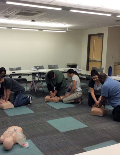 Adult Rescue - CPR Training